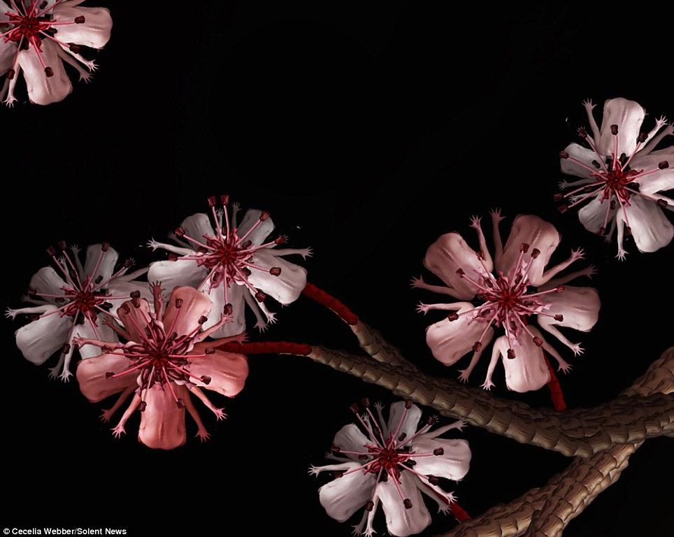 国内人体艺术艳照_美国25岁艺术家用人体裸照制作绚丽花朵图片(多图)