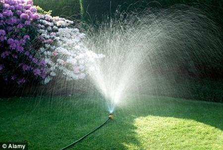 科学家宣称利用使青草生长的自然元素――阳光、水和二氧化碳―就可以制造出飞机发动机需要的柴油燃料来。