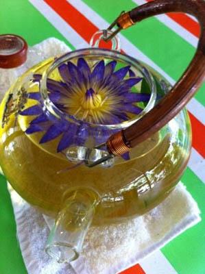 敬辉农场的香水莲花茶,泡在茶汤中的莲花就如艺术品般美。