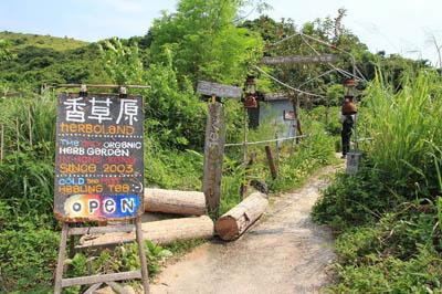 自成一隅的香草原位于洪圣爷湾沙滩旁边。