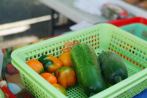 颐丰农场的有机甜椒与冬瓜十分抢手,不消一会己被熟客扫光。