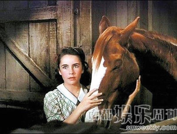 马与人性交视频_12岁的泰勒出演了讲述人与马的经典影片《玉女神驹》
