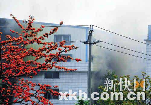 广州一鞋厂仓库起火无人员伤亡 工人称常做演习