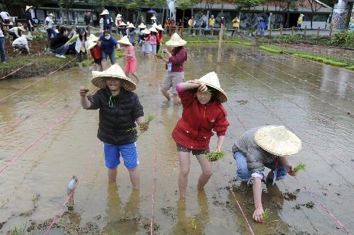 """当日,台北市木栅动物园举行""""动物认养人农村生态体验活动"""",让小"""