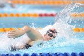 图文:2011全国游泳冠军赛收官 明星3队比赛中