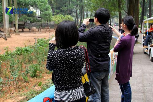 小巧高画质佳能DV广州动物园试用活动