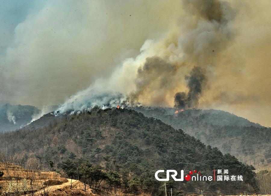 4月12日中午,河北省秦皇岛市抚宁县和青龙县交界处突发森林火灾.