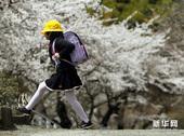 高清组图:日本小学生在震后参加入学仪式
