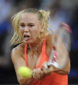 图文:WTA保时捷赛半决赛 沃兹拼尽全力