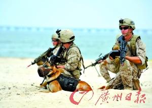 """美国""""海豹突击队""""登陆海滩军事演习。(资料照片)"""