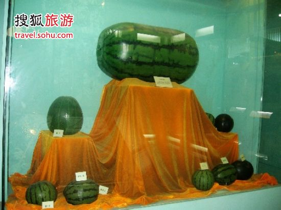 中国西瓜博物馆 li