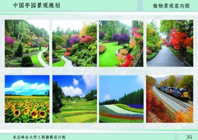 植物景观意向图