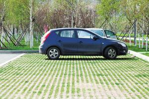 生态停车场(图)图片