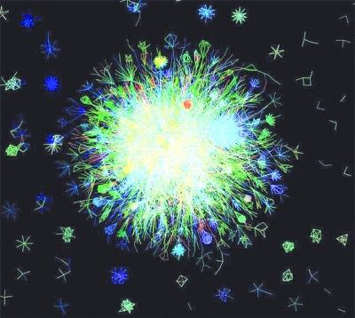 拟南芥是一种植物,科学家们将与其具有相同生物学过程的相关基因