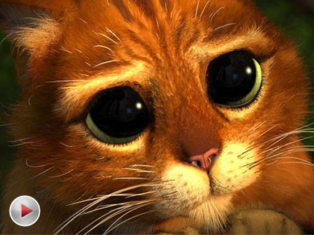 猫咪视频_视频:《穿靴子的猫》预告片