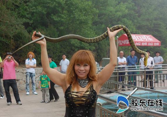 美女与蟒蛇