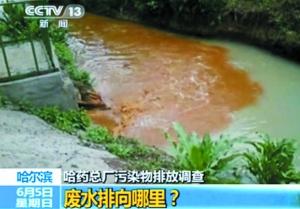 """排污口的水质严重超标,与流经厂区的河水""""泾渭分明""""。"""