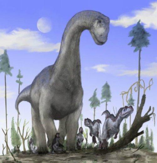 已灭绝的25种史前生物 伤齿龙恐龙中智商最高图片