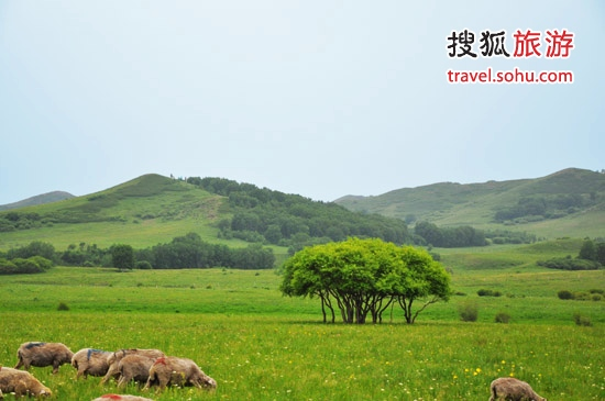 乌兰布统草原位 图片来源:赤峰旅游网