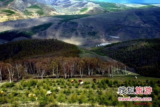 御道口草原森林风景区