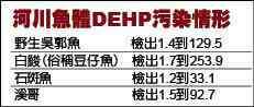 台湾河川鱼类受DEHP污染情形。图片来源:台湾媒体