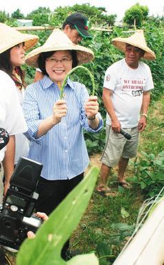 蔡英文到大埔自救会长陈文彬的农园,观察豇豆等作物生长。台湾《联合报》