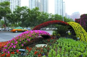 昨日,朝阳公园桥西,为庆祝建党90周年的花坛已经成型。本报记者 薛�B 摄