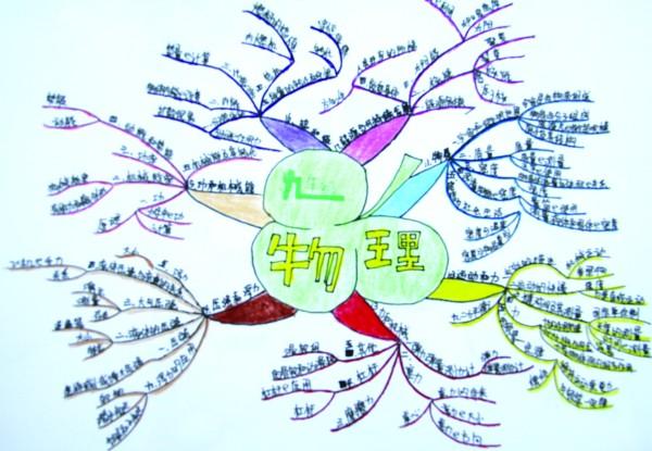 手绘脑图分析中学物理