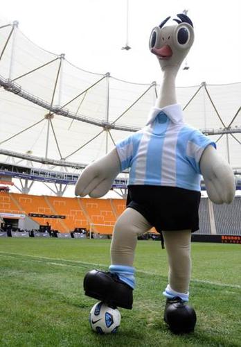 第43届美洲杯将在阿根廷举办,潘帕斯雄鹰为本届杯赛选定的...