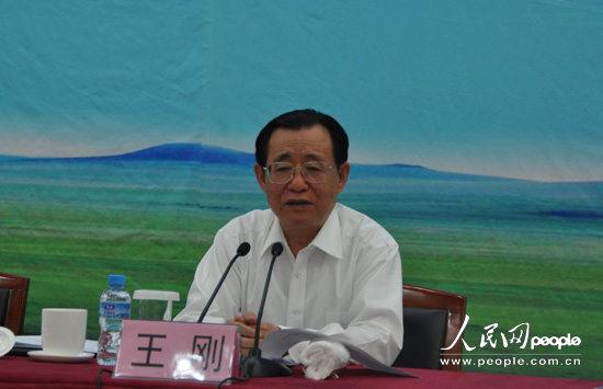 2011年中国经济社会论坛举行 王刚出席(组图)