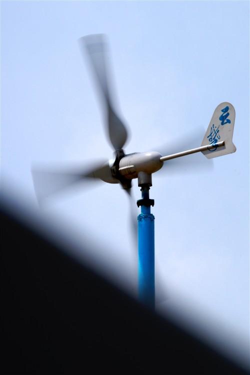 海边全是这样的风力发电机,很绿色,很低碳