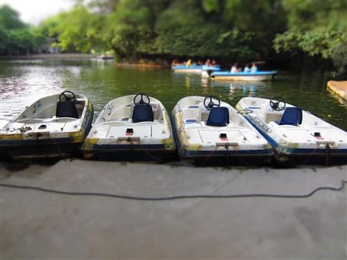 在对池塘旁边的碰碰船进行对焦选择,就可以清晰的展现碰碰船的各细节,而碰碰船的周边的水面和树木则都被虚化了,令碰碰船更突出。