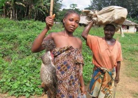 非洲人聚餐吃的恐怖食物!(组图)图片