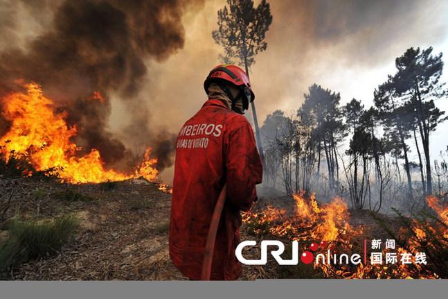 葡萄牙发生森林大火 百名消防员灭火(组图)图片