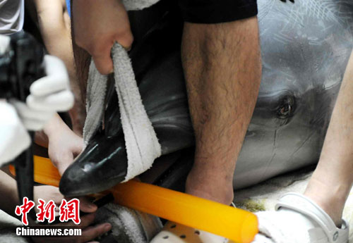 琳达在接受治疗过程中刘的流下了眼泪。中新网发 黄佳健 摄