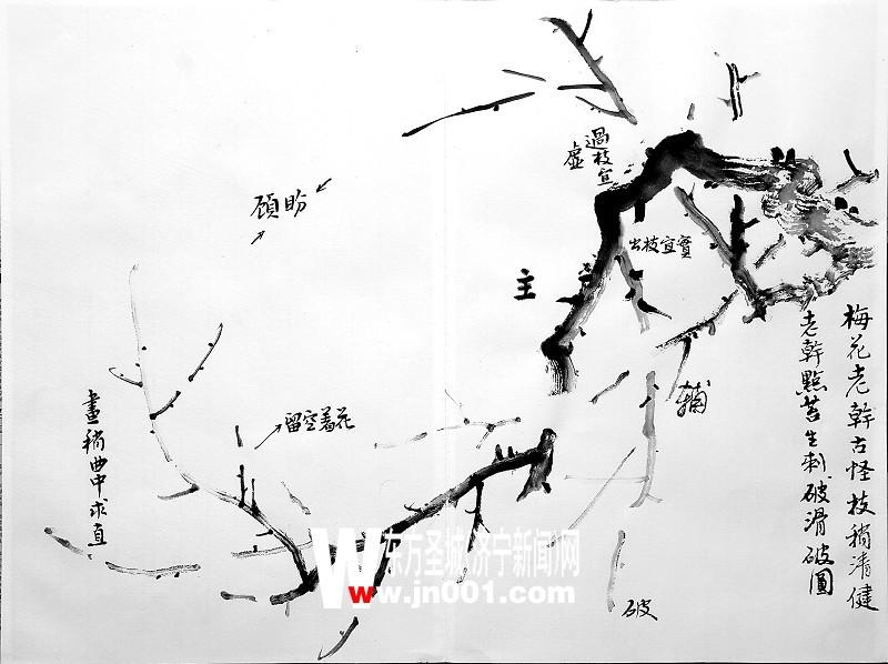 梅花的画法(组图)