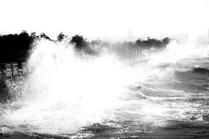 """台风过境 带来""""梅花""""雨(组图)图片"""