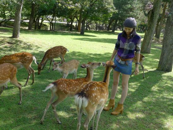 董洁俏皮装扮环保行 亲近自然与动物亲密接触