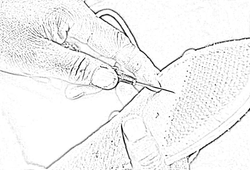 黄瓜手绘图黑白
