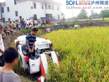 水稻小型收割机_
