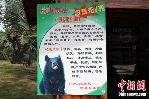 动物园熊胆广告