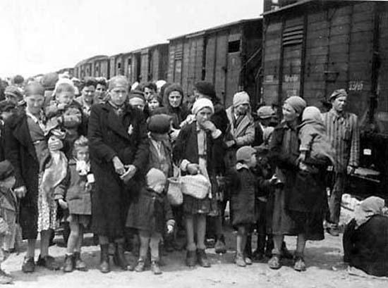 奥斯维辛集中营的女人_新闻图站_中国广播网