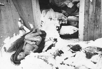 德国纳粹杀女人图片大全 她与德国纳粹党卫军黑衫队的一