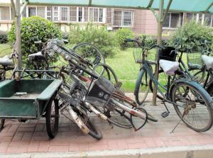 破旧自行车 鸠占鹊巢 成小区通病 处理很费事