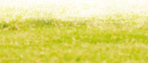 """本报讯(记者张琳实习生周爽)昨晚,湖北队在主场两度落后两度扳平,但最终未能阻挡广东日之泉冲超的脚步,在这场双方均""""不设防""""的进球大战中,湖北队最终以2比3告负。"""