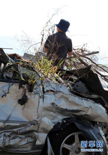在日本岩手县陆前高田市,一台汽车残骸上已长出新草。(9月9日摄)