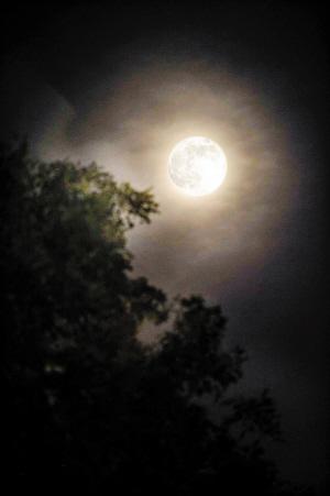 """昨晚,一场名为""""家好月圆庆中秋""""的中秋主题游园活动在光明办事处康"""