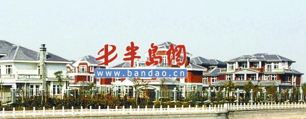 资源强镇广饶县大王镇别墅出租却有3家500强匮乏个人经济燕郊图片