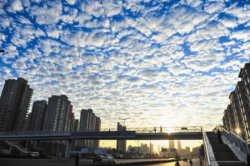 天津上空出现大量透光高积云