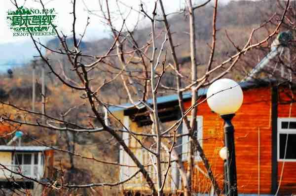 巴克山间的小木屋